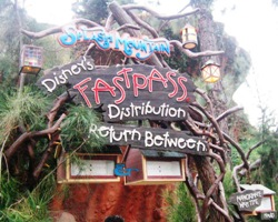 Sandblasted Cedar Wood Signs for Disneyland Resort Anaheim